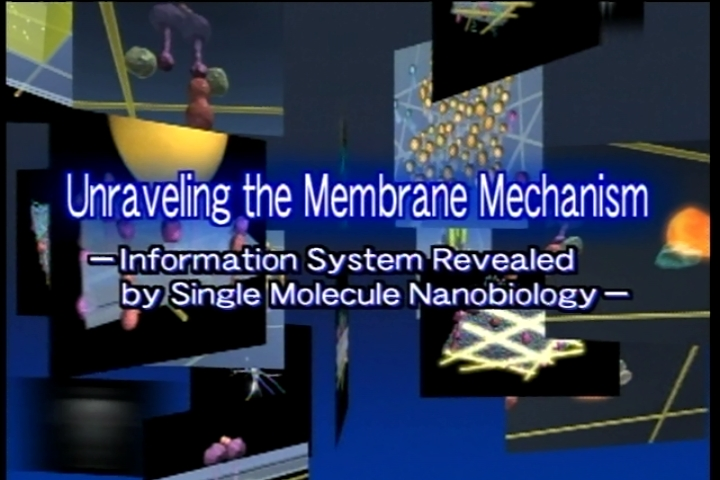 Kusumi Membrane Organizer Project,ERATO-Unraveling the Membrane Mechanism